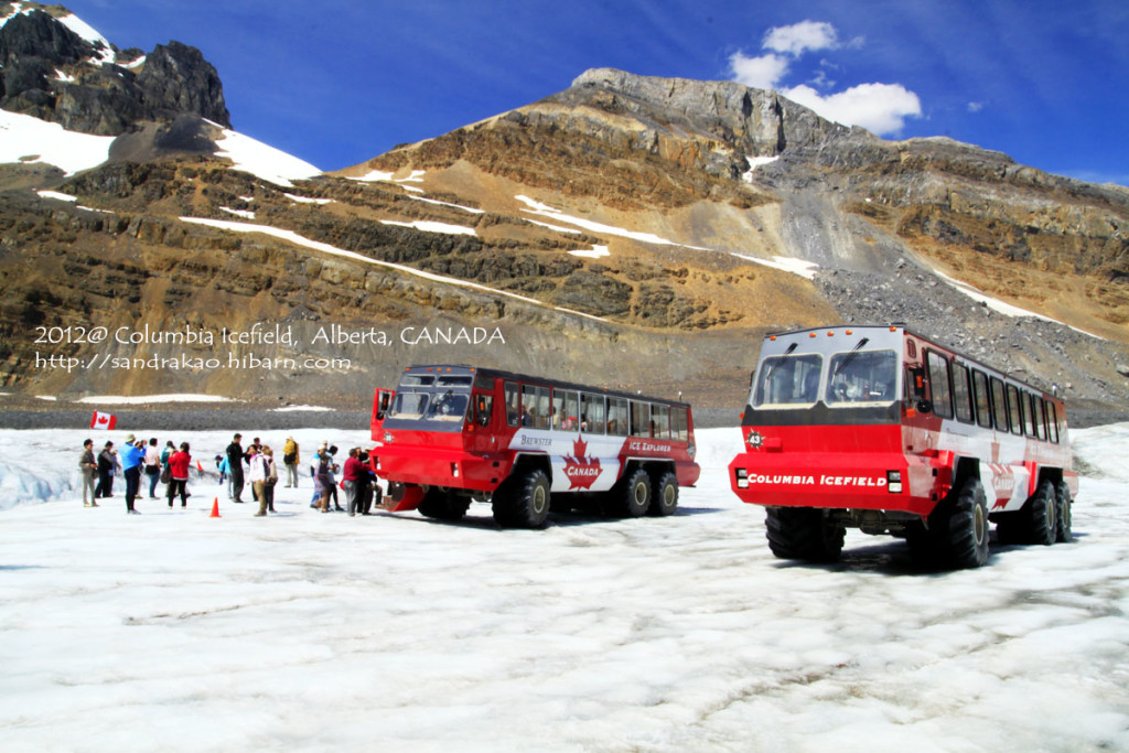 Icefield_1